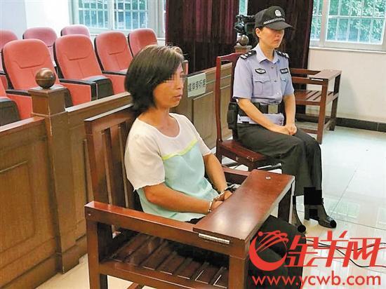文/图 金羊网记者 董柳 通讯员 黄鸿志 殷雨晴 潘文杰